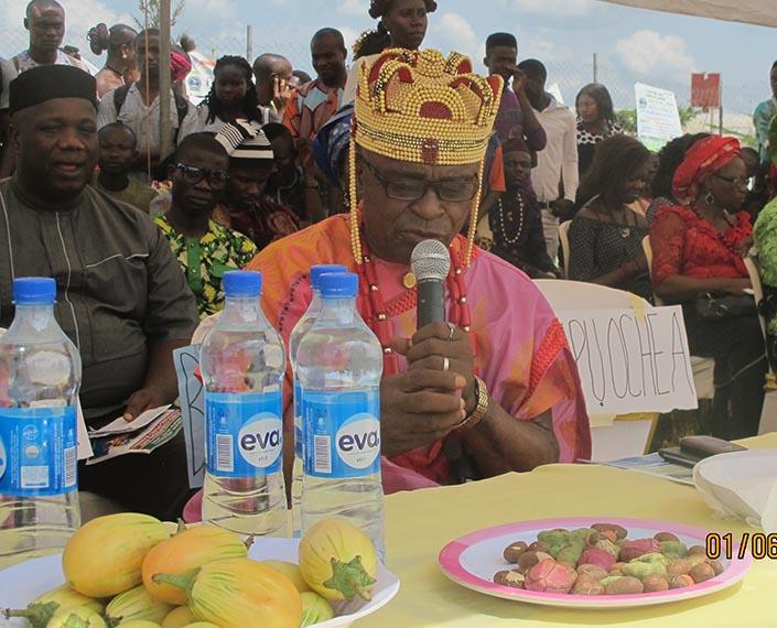 His Royal Highness Chief Dominic Alo blessing the Kolanut